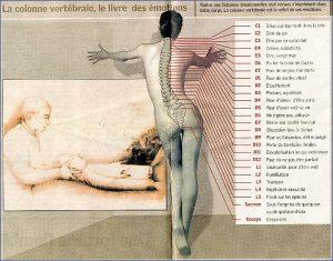 La colonne vertébrale, le livre des émotions